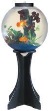 Fish tank bowls aquarium supplies at for Small fish bowl filter